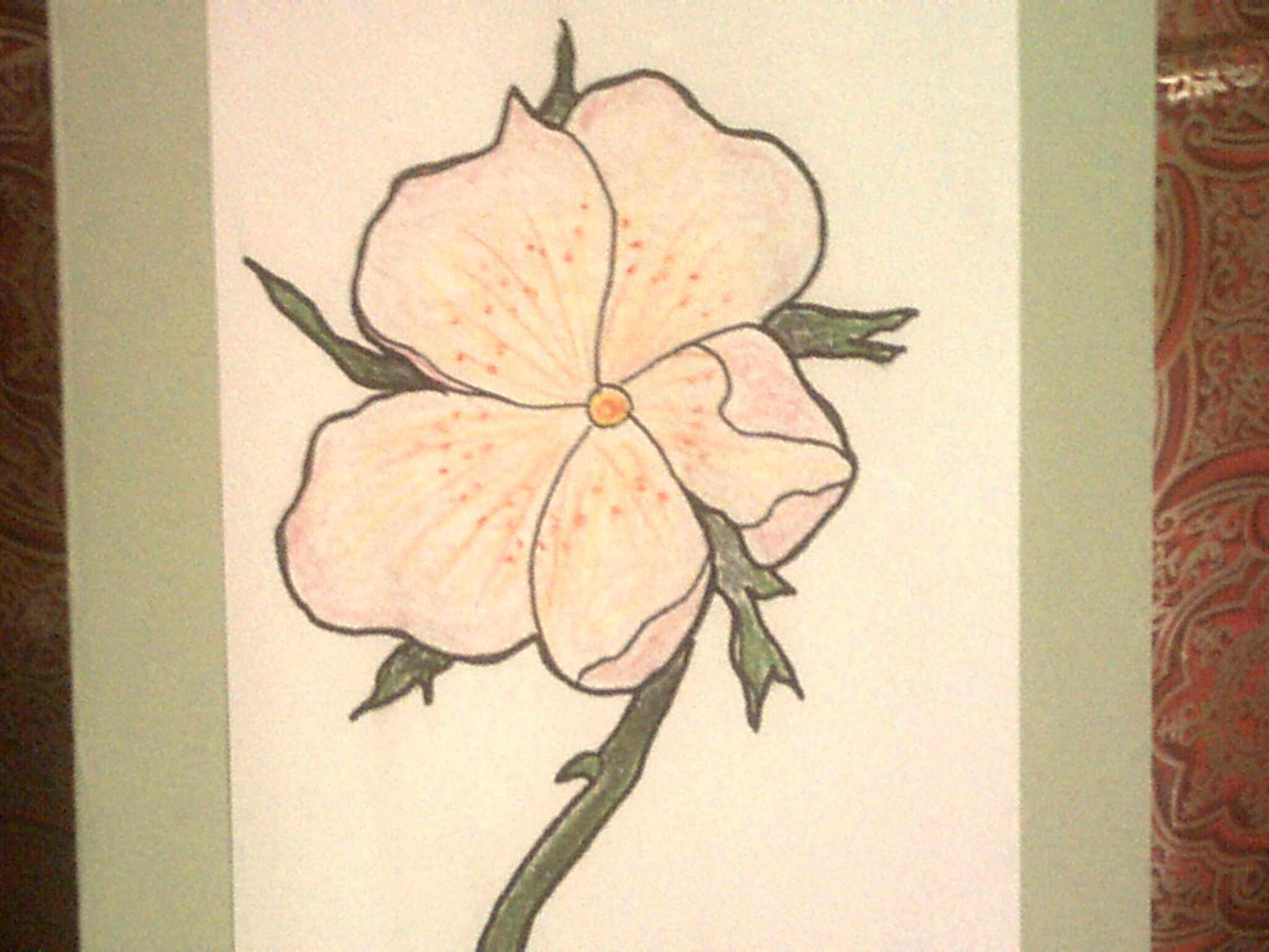 Wild Rose details